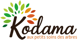 Kodama Logo