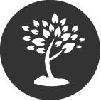 respect arbre