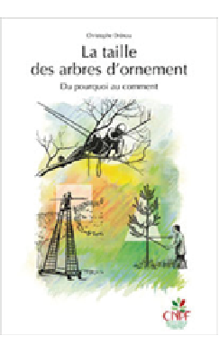 arboriculture - la taille d'ornement